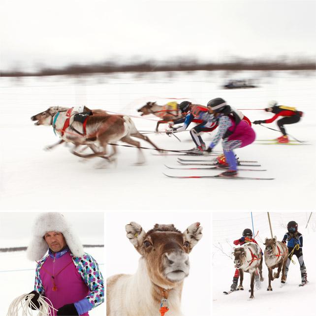 ReindeerWorldCup_2