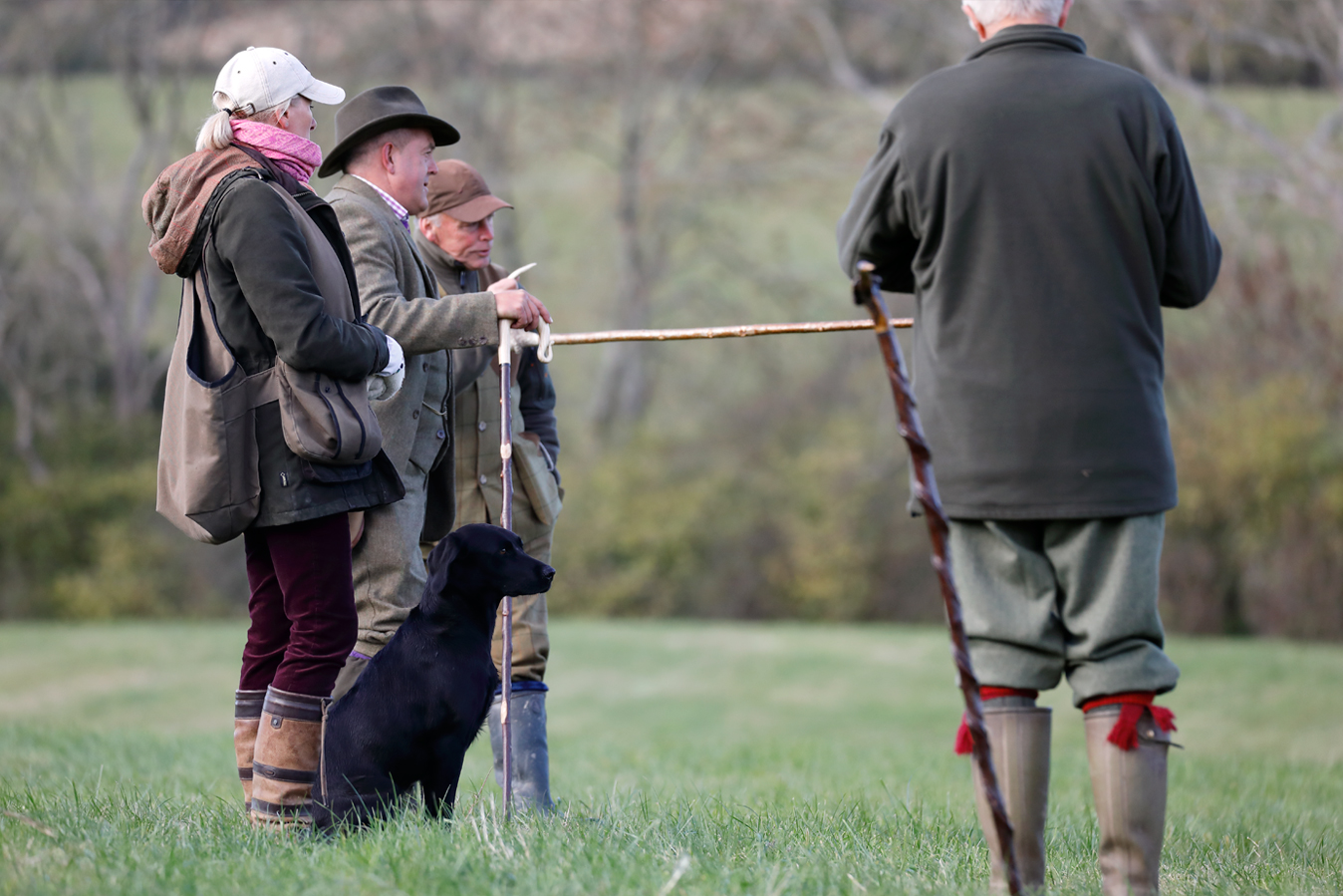 Field sports photography. Judges discuss next retrieve for field trial competitor